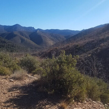 Lovell canyon